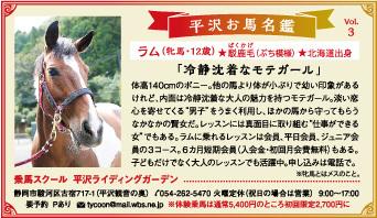 平沢お馬名鑑 Vol.3