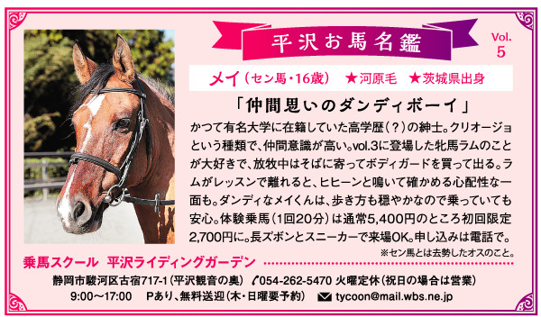 平沢お馬名鑑 Vol.5