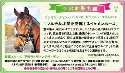 平沢お馬名鑑 Vol.6