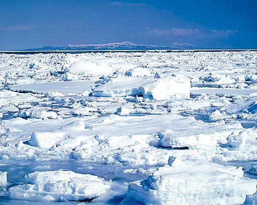 本物の冬に会いに北海道へ